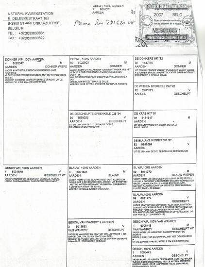 CCI10212016_0025 - Copy