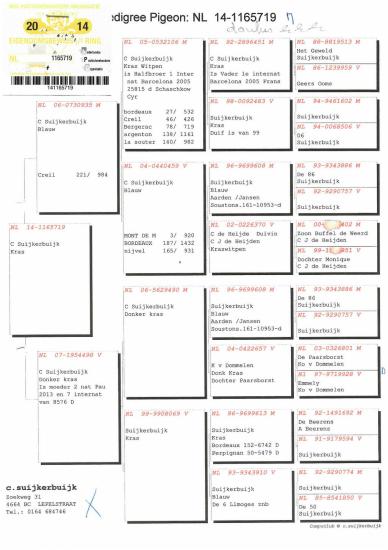 Koop30stamboom-page-001_websize