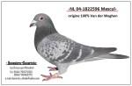 NL 04-1822596. bunic tata